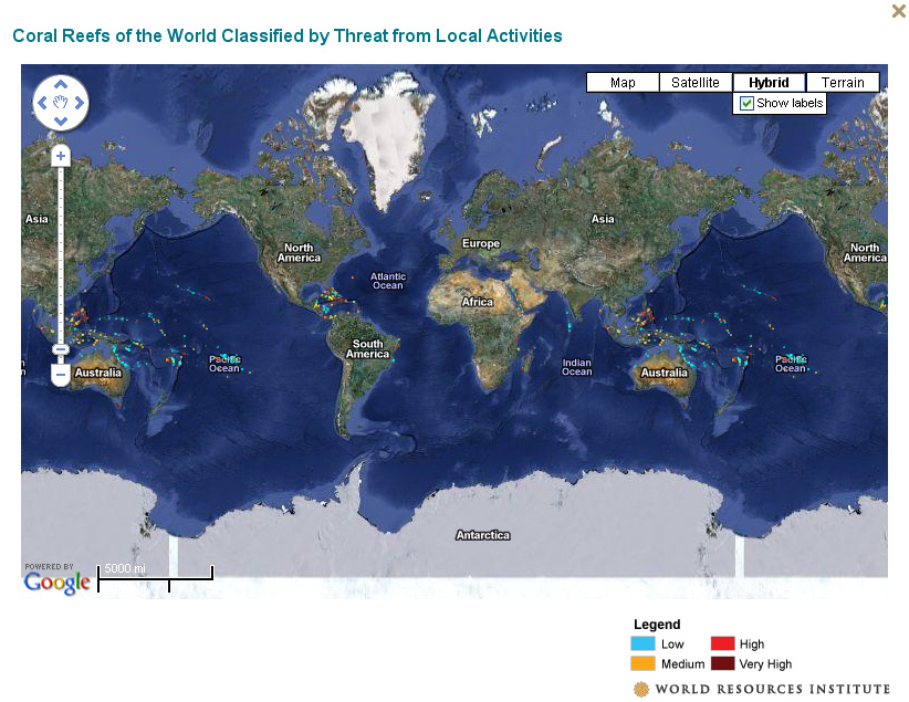 Online global reefs map the world resources institute has a new online map of global reefs classified by threat risk click here to explore the map andor download the kml gumiabroncs Gallery